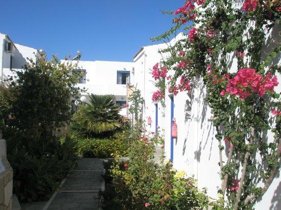 مارينا ساندز آرت هوتل: vue des bâtiments depuis le jardin