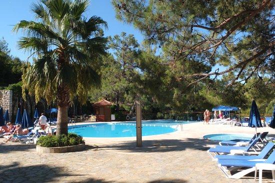 Montana Pine Resort: Main pool