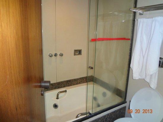 Majestic Rio Palace Hotel: la ducha es muy buena, pero no me animé a la tina..