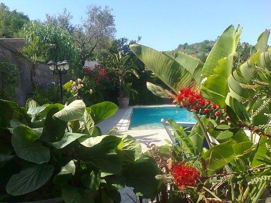 Casa Seralba B&B: piscina scoperta