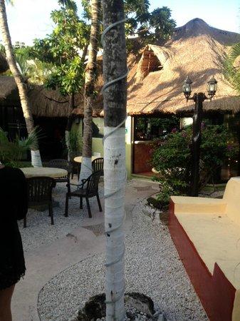 Hotel Aventura Mexicana: Mayan Bistro for breakfast