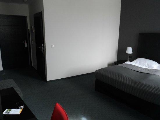 Hotel Vienna Urban: Room 308 looking towards entrance way.