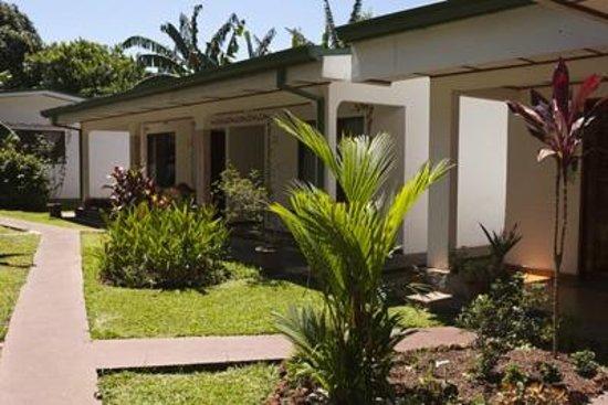 Hotel La Rosa de America : Room and gardens