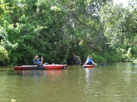 Palm Bay Kayaks: A perfect day