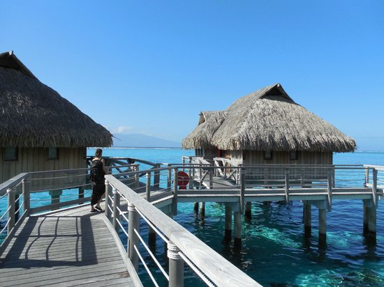 Our End Overwater Bungalow Picture Of Sofitel Moorea Ia