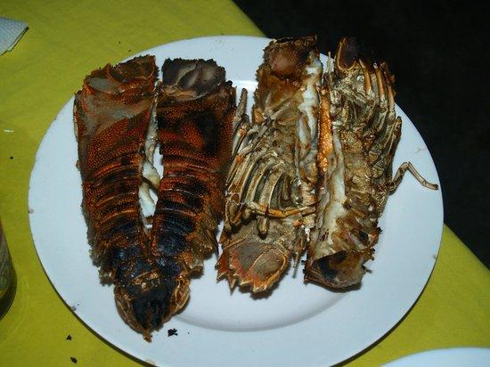 Juma Restaurant: Aragoste e cicale alla griglia