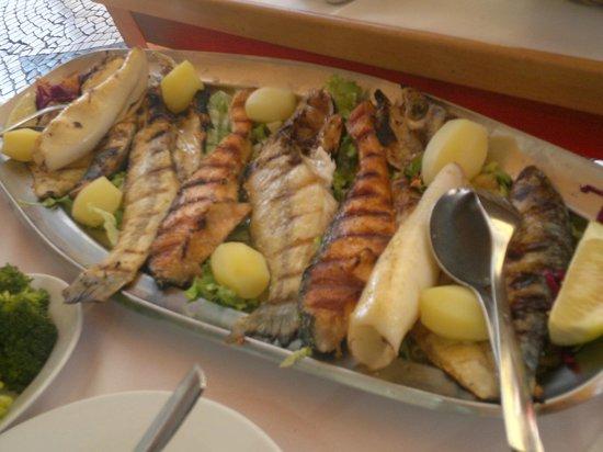 Restaurante Marisqueira Concha D`ouro : Diversas variedades de Peixes, e lula