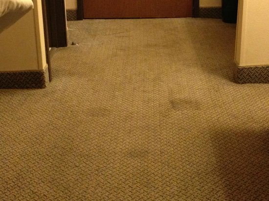 La Quinta Inn & Suites Jackson: Very dirty carpet