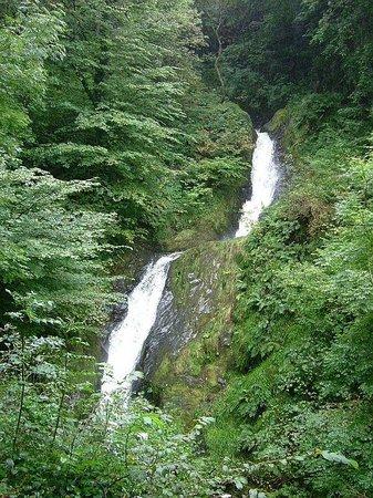 Talyllyn Railway : Dolgoch Falls.