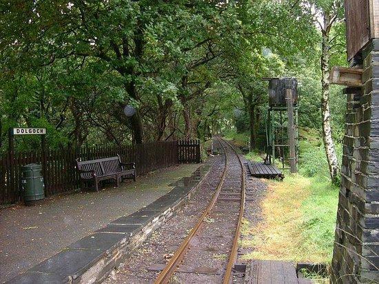 Talyllyn Railway : Dolgoch Station.