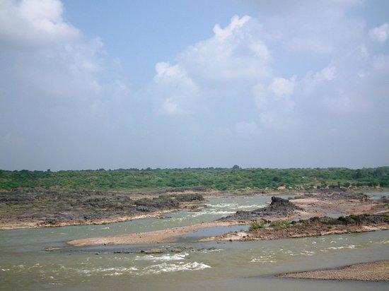 Riparian - A River Side Resort : View of Mahi river
