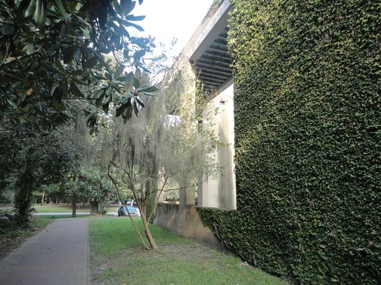 Inn at Middleton Place: Beautiful ivy covered building