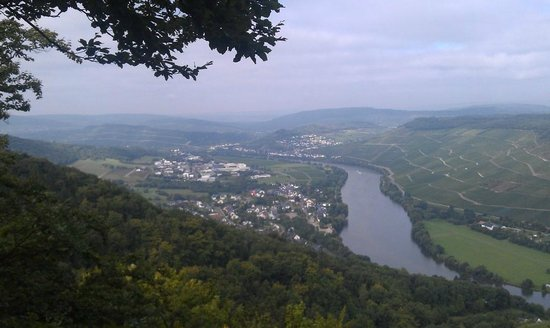 Бернкастель-Кус, Германия: Mosel Valley above Bernkastel (toward Piesport)