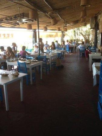 Pepe's Fishing Club: PePe's in Biblos