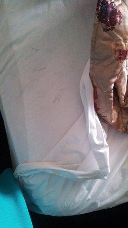 Budget Inn: dirty sheets