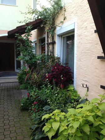 Altmann's Stube Hotel & Restaurant: A view of plants in courtyard and window of Room 10