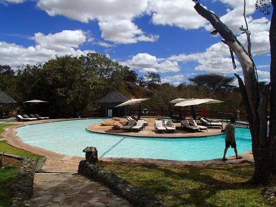 Tarangire Sopa Lodge: Lovely pool to relax around if you can!