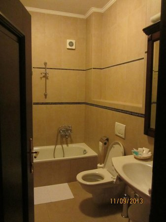 Hotel U krale: Bathroom