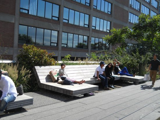Wooden lounge chairs Picture of The High Line New York City