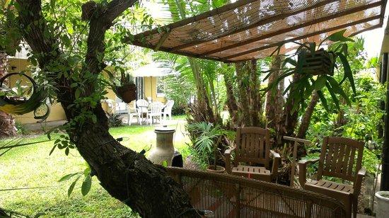 Riotel Island Resort : garden