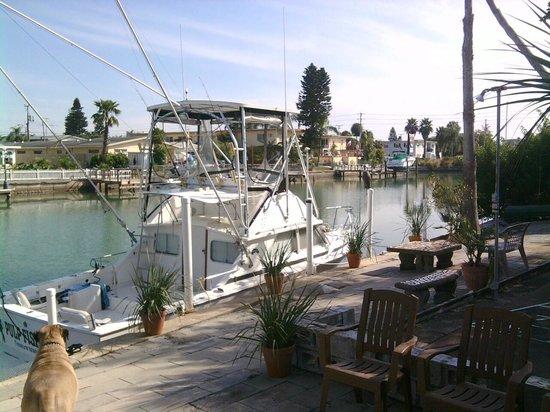 Riotel Island Resort : dock facing Boca Ciega inlet