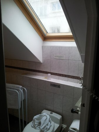 Hotel de Paris: Pratique le vis a vis pour l'exhibition  dans les toilettes