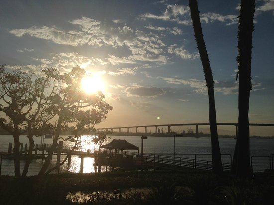 Coronado Island Marriott Resort & Spa: Sunrise view from my room