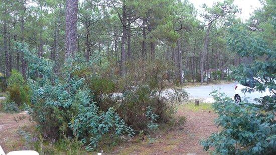 Euronat, Centre de vacances Naturistes : vue du chalet