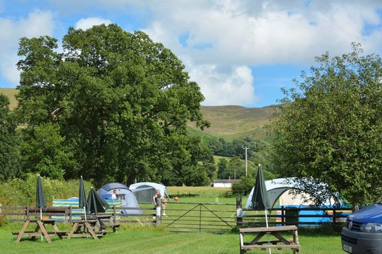 Llangynhafal, UK: Camp site and picnic area