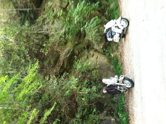 Cherohala Skyway: Bald River Falls parking