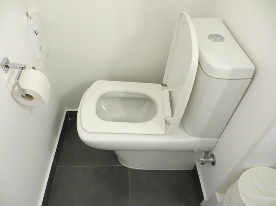 Ibis Paris Canal Saint Martin : A toilet that has to be used sideways!