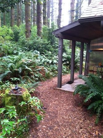 WildSpring Guest Habitat : entry to cabin 5