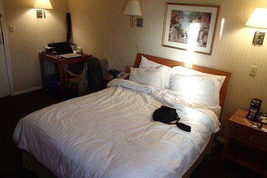 BEST WESTERN Capilano Inn & Suites: Queen size bed