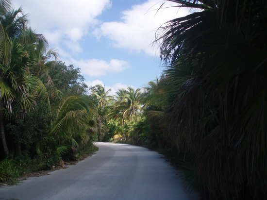 Kore Tulum Retreat and Spa Resort: Took bikes to the Reserve entrance