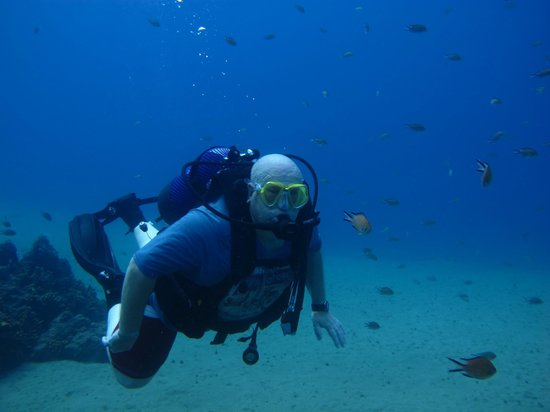 Atlantis Diving Lanzarote: Come and join me!!!