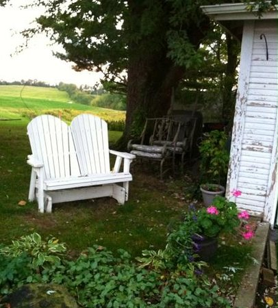 A Day in the Country B&B: the view from along the side of house