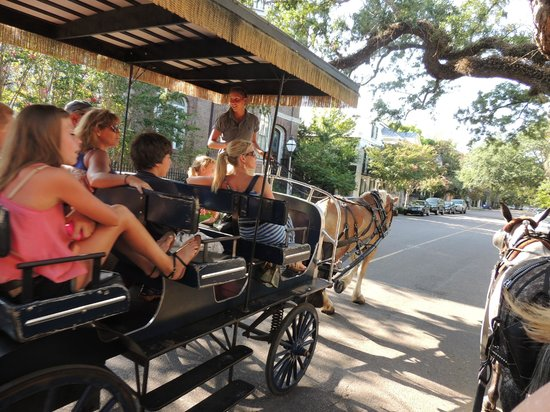 The Mills House Wyndham Grand Hotel: Horse Drawn Carriage Tour-Loved this!
