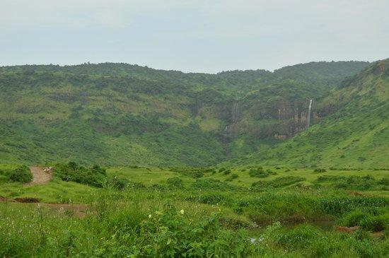 Navi Mumbai, India: The surrounding green