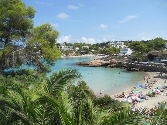 Grupotel Oasis : view from the hotel of the beach and bay