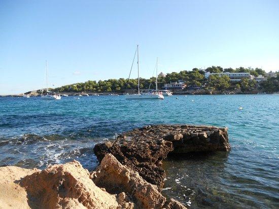 Grupotel Oasis : looking across the bay