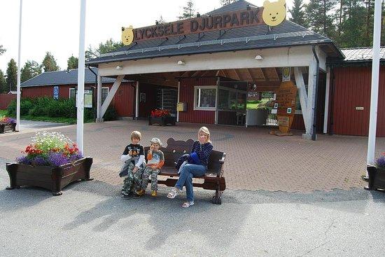 Super Zoo Picture Of Lycksele Djurpark Lycksele Tripadvisor