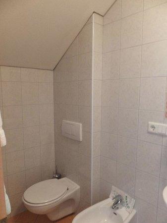 Gasthof Alpenrose: Clean Bathroom