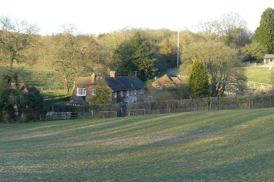 Blackbirds Cottage Bed & Breakfast: Field view