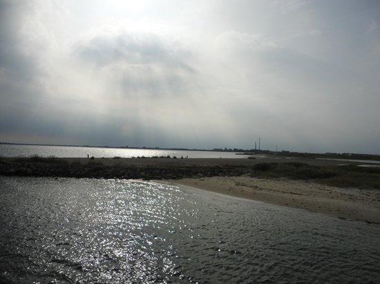 Thyboron Lystbaadehavn