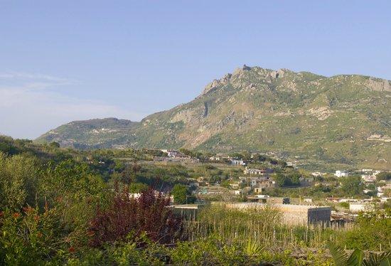Casa Seralba B&B: vista del Monte Epomeo