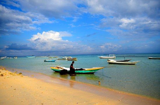 Shipwrecks Beach Villa: Beach near Shipwrecks