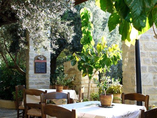 Eleonas: The terrace restaurant