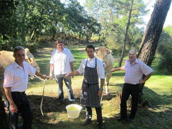 Villa de L'Etang Blanc : Les boeufs de chalosse d'Hervé Lard, dégustés en tapas, étaient exposés