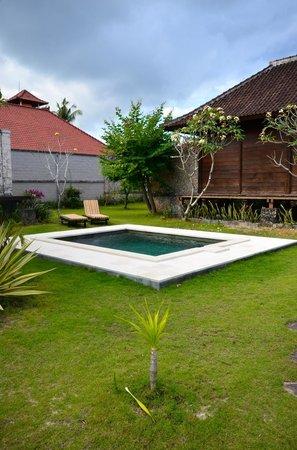 Shipwrecks Beach Villa: Pool