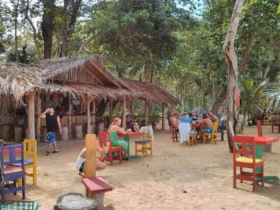 Buddha Beach Bar : The beach Bar at Playa Bluff